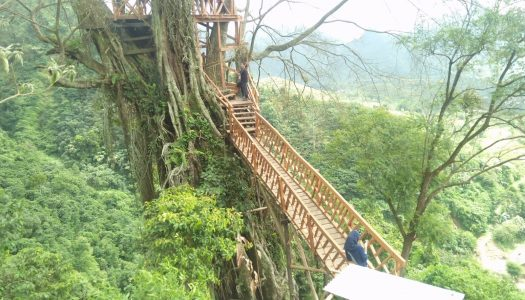 Tree House At Curug Ciherang
